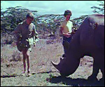 Main image of Last Rhino, The (1961)