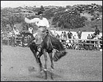 Main image of Topical Budget 114-1: Cowboy Pageant (1913)