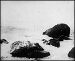Main image of Rocky Shore (1896)
