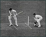 Main image of Essentially British?: Cricket (1951)
