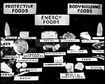 Main image of Enough to Eat? (1936)