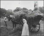 Main image of Topical Budget 255-1: Women Hay Makers (1916)