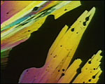 Main image of Divertimento (1968)