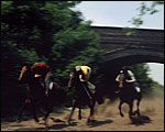 Main image of Railways Conserve the Environment (1970)