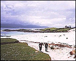Main image of Castaway 2000 (2000-01)