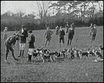 Main image of Topical Budget 117-2: Worcester Park Beagles (1913)