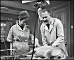 Main image of Weavers Green (1966)