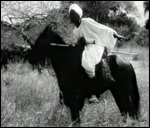 Main image of Stampede (1930)