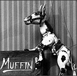 Main image of Muffin the Mule (1946-55)