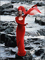 Main image of Body Beautiful, The (1990)