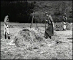 Main image of Life in the Highlands (1936)