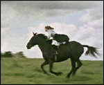 Main image of Adventures of Black Beauty, The (1972-74)