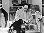 Main image of Zoo Time (1956-68)